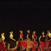 Un momento di Rutas flamencas